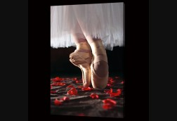 Ballerina with Red Petals